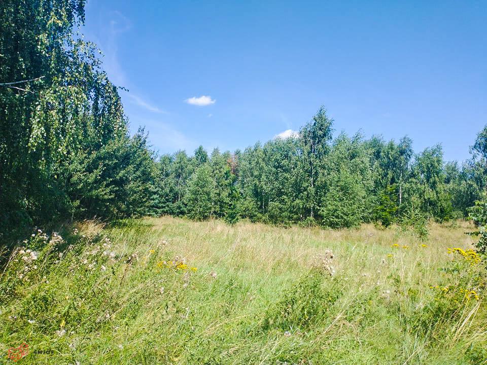Działka-nad rzeką-Zapolice (2)