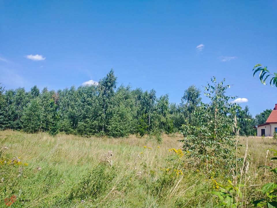 Działka-nad rzeką-Zapolice (10)